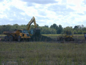 Construction at the Wetland Site